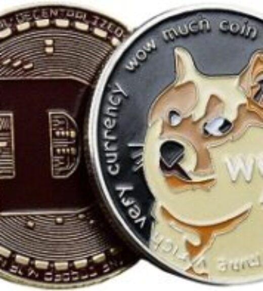 aa-dearjookwak20210807-2021edition-dogecoin